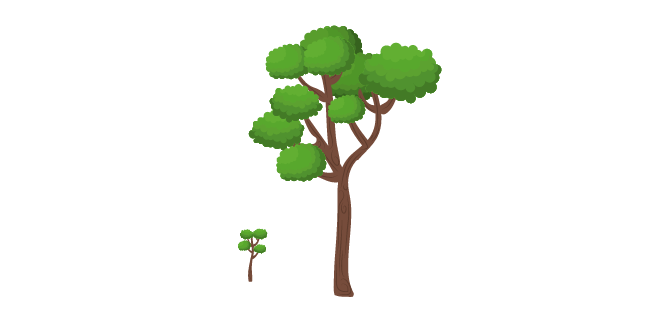 trees representing scale